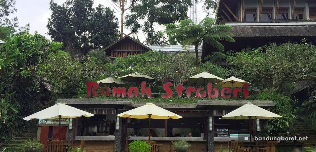 Rumah Stroberi Lembang Bandung